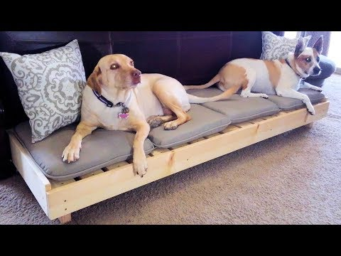Custom Large Raised Wooden Dog Bed // DIY How-To