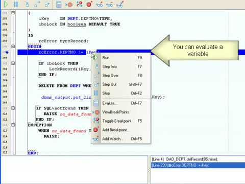 How to use a Oracle PL SQL debugger
