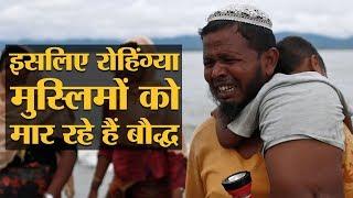 म्यांमार में रोहिंग्या मुस्लिमों के नरसंहार के पीछे गाय की कुर्बानी है!   The Lallantop