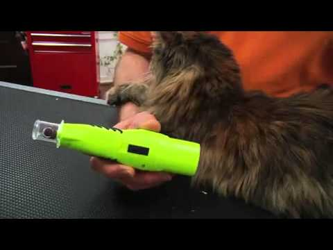 Demonstration: Furminator Nail Trimmer and Nail Grinder for Cats