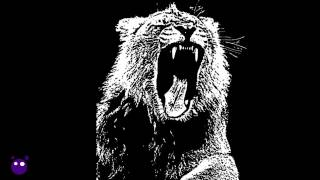 Animals - Martin Garrix (Hypnotik Trap Edit Extended Mix by Big Bass)