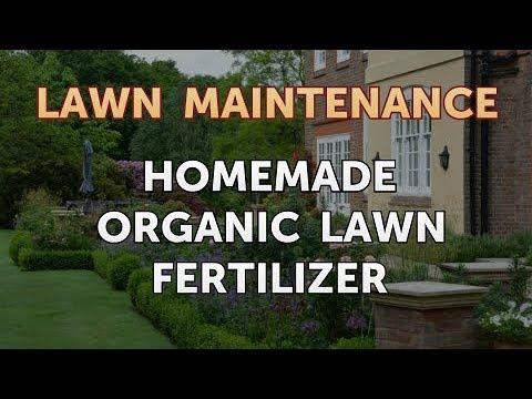 Homemade Organic Lawn Fertilizer