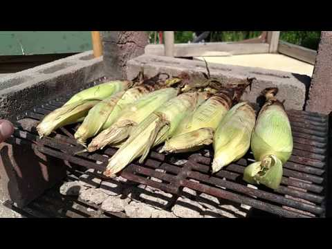 Best Grilled Corn!