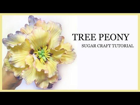 How to Make A Sugar Peony Tutorial: Yellow Tree Peony - Gumpaste