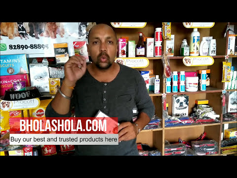Pet Care - How to Care your dog Tick Problem - Bhola Shola