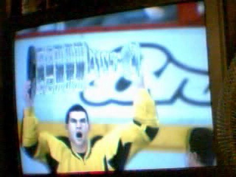 Yellow Jackets Win The Stanely  Cup (Fight included) (NHL 09