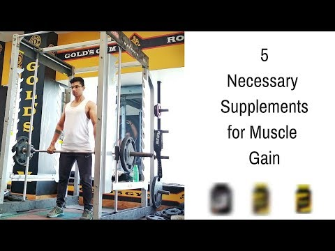 Necessary Supplements To Gain Muscle | Most Important Supplements | Supplement From Chemist