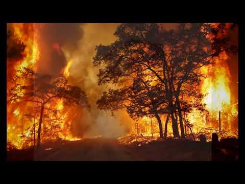 Day After Disaster Learn The Basic Survival Medicine Skills