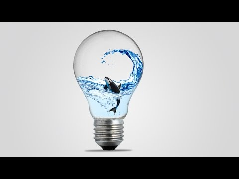 Photo Manipulation Tutorial - Light Bulb and Whale Shark