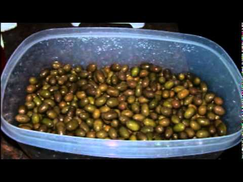 Curing Green Olives