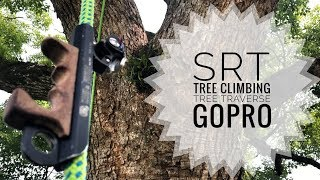Reiroco Tree Climber Videos - PakVim net HD Vdieos Portal