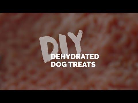 DIY: Dehydrated Dog Treats
