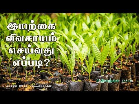 இயற்கை விவசாயம் செய்வது எப்படி? | Organic Farming Tamil  Documentary