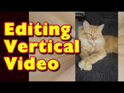 Editing Vertical Video with Vegas Movie Studio