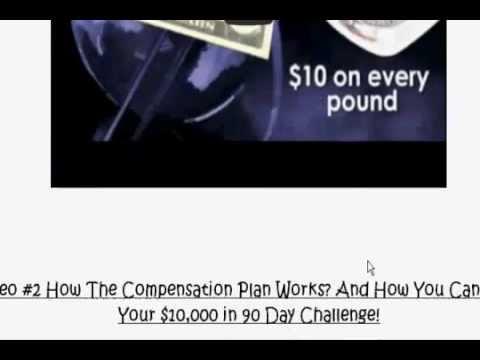 epx body walkthru - epx cardio burn - 90 day challenge - 10k empire guaranteed income-epigenetics