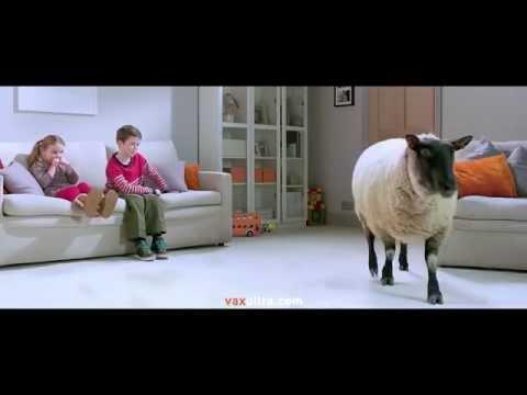 Vax Rapide Ultra Carpet Cleaner TV Advert - April 2014
