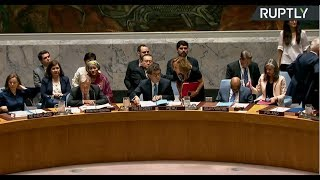 UNSC rejects Russia's resolution calling to stop aggression against Syria