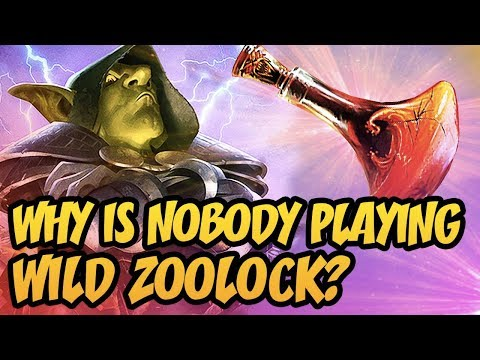 Hearthstone: Why Is Nobody Playing Wild Zoolock?