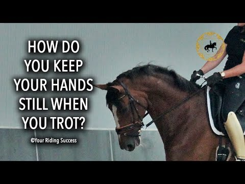 How Do You Keep Your Hands Still When You Trot? - Dressage Mastery TV Ep218