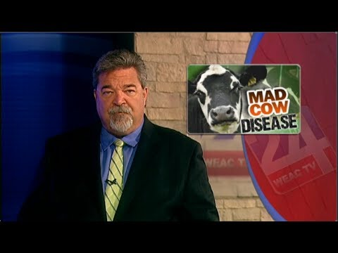 Rare Form of Mad Cow Disease Found in Alabama