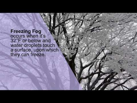 Science of Fog Formation