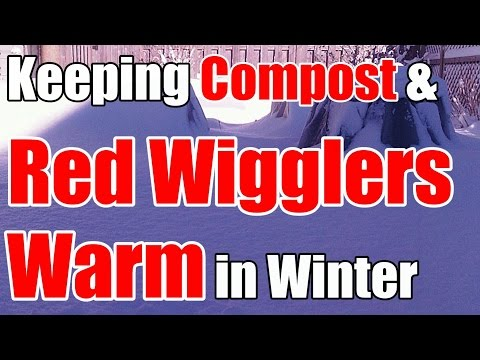 2 Min. Tip: How We Keep Compost & Red Wigglers Warm All Winter