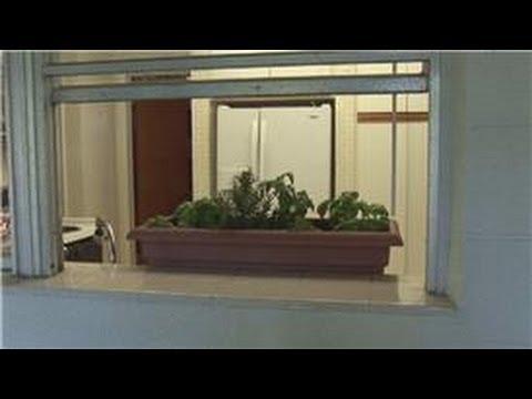 Beginners' Gardening Tips : How to Build an Indoor Herb Garden