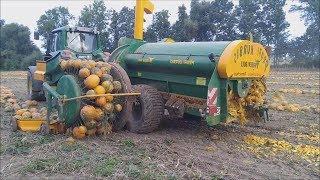 Modern Agriculture Machines Harvesters: Pumpkin and Squash Field Fertilizing