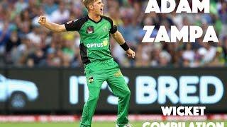 Adam Zampa // Wicket Compilation