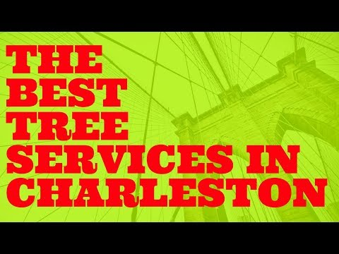 THE BEST TREE SERVICES IN CHARLESTON SOUTH CAROLINA SC