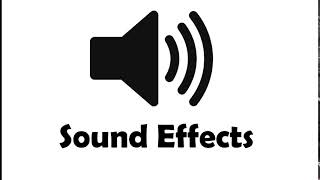 Crowd Laughing 08 Sound Effect Videos & Books