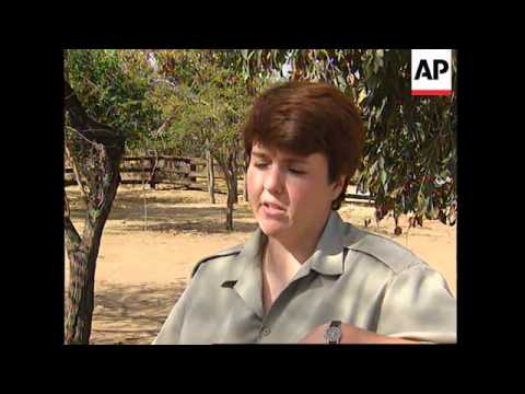 SOUTH AFRICA: BABY ELEPHANT IS ADOPTED BY RESEARCH & BREEDING CENTRE