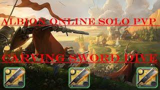 Albion Online-Solo PVP dive Carving sword 5