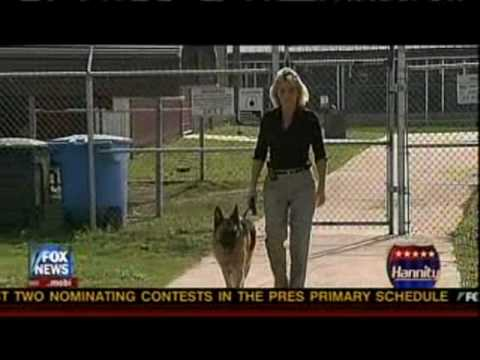 K-9 SOLDIERS NEED HOMES -- ADOPT A RETIRED MILITARY WORKING DOG!