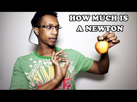 HOW MUCH FORCE IS 1 NEWTON | (GREAT EXAMPLE + MAGIC)