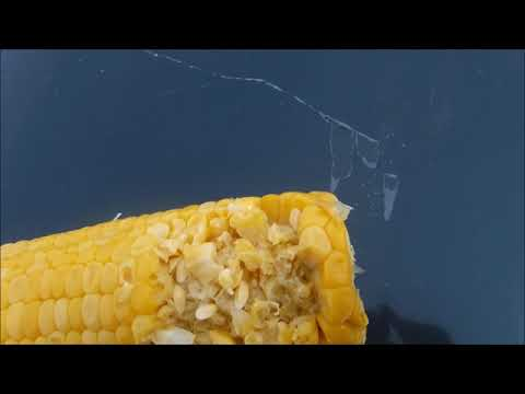 Sweet Corn In  A Bag From The Dollar Store