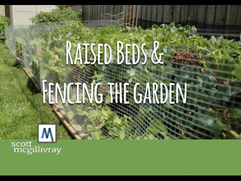 Raised Beds and Fencing the Garden