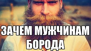 Download Почему мужчина должен быть с бородой. Значение бороды для славянина. Кто и почему нам навязал бритьё Video