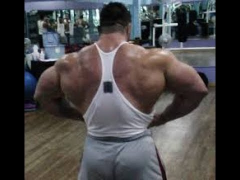 Bars That Build A WIDE Back
