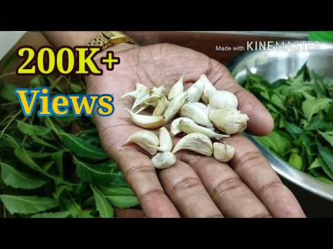 How to make  home made pesticide by using Neem leaves and garlic.