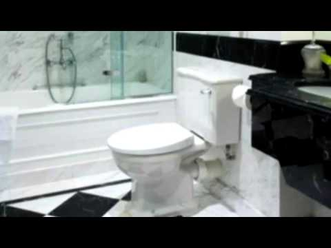 Toilet Flush Sound Effect In High Quality   Sound Effect 27