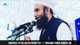 Bakheel Sy ALLAH Ko Nfrat Hy || Islamic Whatsapp Status || Molana Tariq Jameel Sb