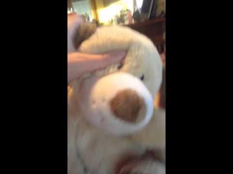 My Webkinz JR. Tan Puppy