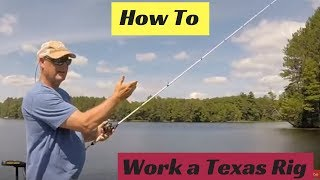 How To Work A Texas Rig Worm