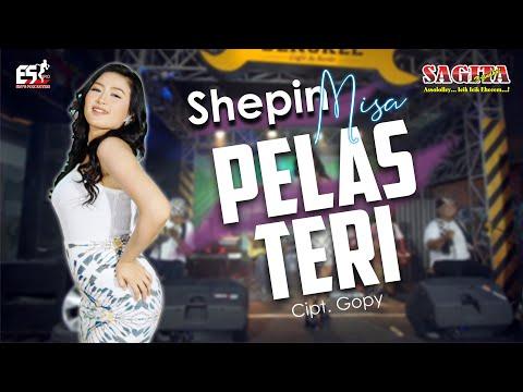 Download Lagu Shepin Misa Pelas Teri Mp3