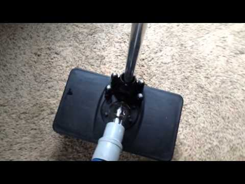Best Way to Remove Pet Urine from Carpet and Carpet Pad