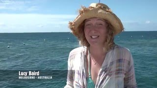 Great Barrier Reef Today - Moore Reef with Sunlover Reef Cruises