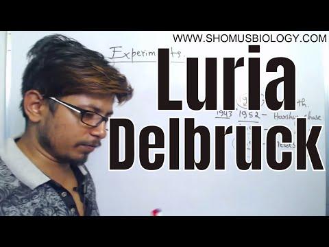 Luria delbruck experiment