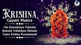 Krishna Gayatri Mantra | शक्तिशाली कृष्ण गायत्री मंत्र | 108 Times | Om Damodaraya Vidmahe