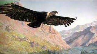 El Condor Pasa - Paul Simon &  Garfunkel